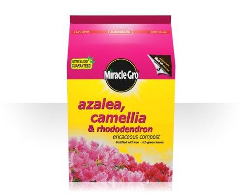 scotts-miracle-grow-azalea-camelia-and-rhodedendron-8lt