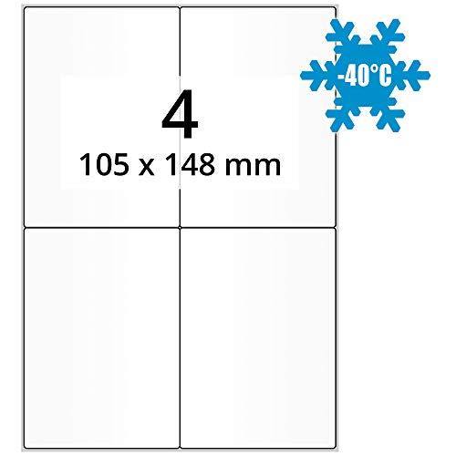 """Papier 3/"""" Kern weiß 51 x 25 mm Spezialklebstoff 3000 Tiefkühletiketten"""