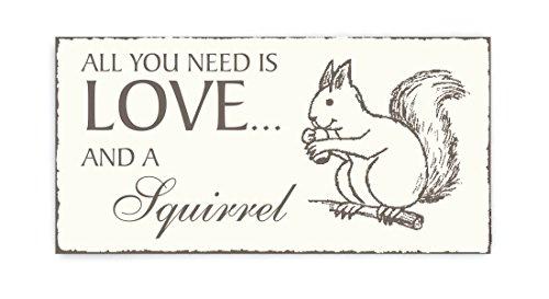 SCHILD Dekoschild « All you need is LOVE and a SQUIRREL » Eichhörnchen Vintage Holzschild Türschild Förster Jäger