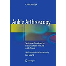 Ankle Arthroscopy: Techniques Developed by the Amsterdam Foot and Ankle School