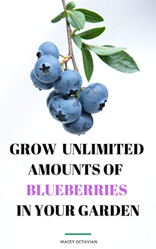 How to Grow Unlimited Amounts of Blueberries in Your Garden (English Edition)