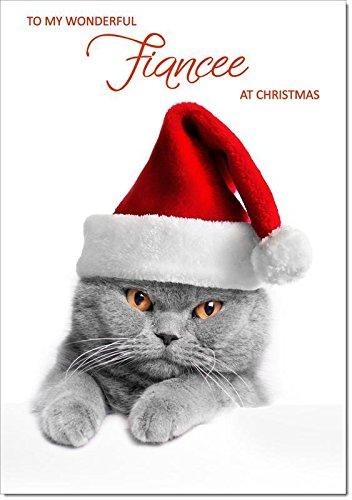 Fiancee Christmas di gatto con cappello di Babbo Natale–dimensione media