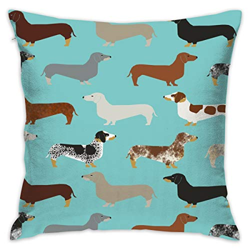 Mabell Beautifully Decorated Home Doxie Dachshund Dachshunds Dogs Dog Pet Dog Doxie Dog Doxies Cute Puppy Throw Pillow Case 18X18 Inches
