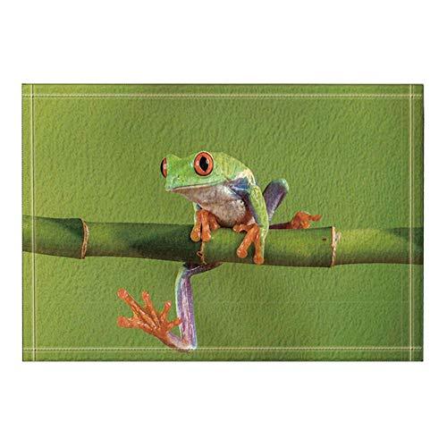 MMPTn Impresión Animales Decoración Rana Las alfombras baño bambú Alfombra Antideslizante Entrada Piso Exterior Puerta Delantera para Interior Alfombra baño para niños Accesorios baño 15.7x23.6in