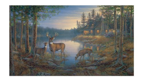 Preisvergleich Produktbild York Wallcoverings Lake Forest Lodge LM7954M Quiet Places Mural,  Multi by York Wallcoverings