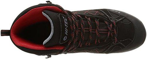 Hi-Tec Ridge Wp, Chaussures de randonnée montantes homme Noir (Charcoal/Black/Lingon)