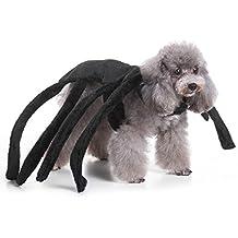 Suchergebnis Auf Amazon De Fur Hundekostum Spinne