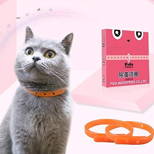 Ant Power Katzenhalsband mit Flohhalsband und Zeckenhalsband, 3 Monate, verstellbar, für Kätzchen, Katzen und kleine Haustiere