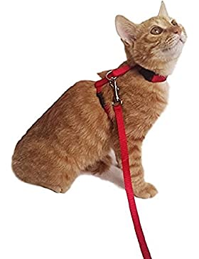 [Sponsorizzato]Ducomi Silvestro - Pettorina Regolabile e Guinzaglio 105 cm in Nylon per Gatti, Conigli e Cuccioli (Red)