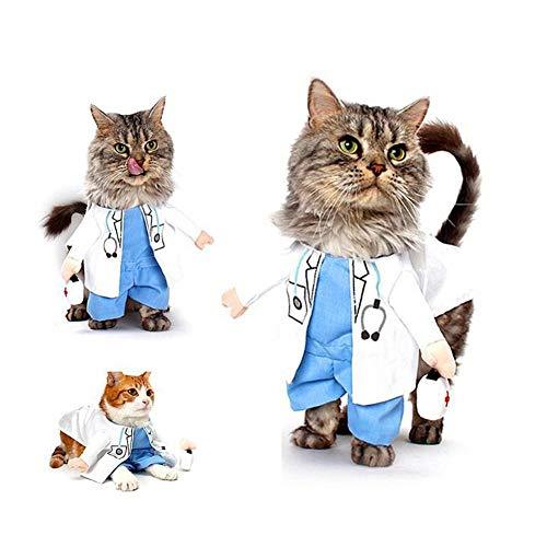 - Er Arzt Hund Kostüm