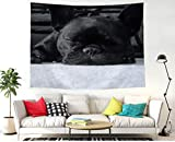 BAOQIN 60 * 80 Inches Unique Design Wonderful Prints The Sleeping Black Dog Wall Hanging Tapestry Bohemian Mandala Hippie Tapestries for Bedroom Living Room Dorm (Puppy)