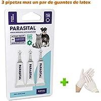 Kanxeto Pipetas Perros y Gatos hasta 10 kg. (+ 1 par de Guantes de látex), 3 pipetas antiparasitos 100% Naturales PARASITAL, Perros pequeños, Especial Leishmaniasis pulgas y garrapatas