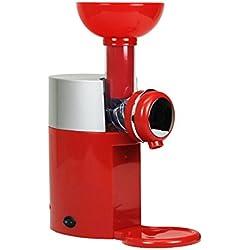 Machine à crème glacée de fruits maison Machine à crème glacée maison de DIY