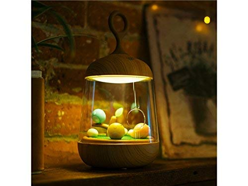 Guai Home Lampen-Berührungssensor mit USB-Aufladung für Kinder-Schlafzimmer Besonders Micro-Landschafts-LED-Nachtlicht für Kinder