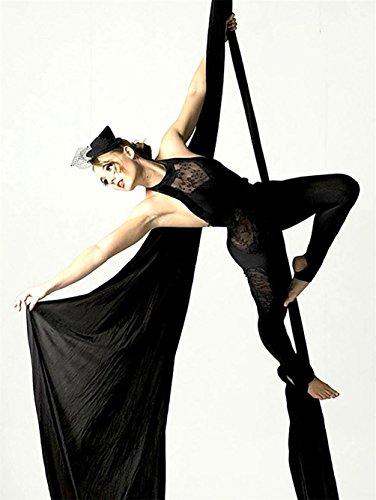 Yoga DIY Silk Pilates Premium Aerial Silks Equipment Aerial Yoga Tuch Aerial Silk elastische Yoga Hängematte NUR Stoff KEIN Zubehör (Schwarz)