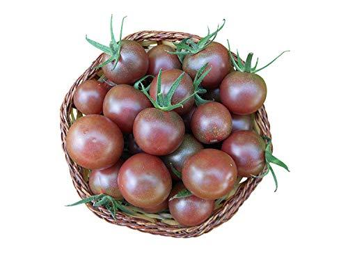 "Tomate""Black-Cherry"" 10 Samen -Selten-"