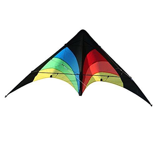 Elliot Delta Stunt, Zweileiner Lenkdrachen für Einsteiger, 130 x 65 cm, ready to fly, rainbow
