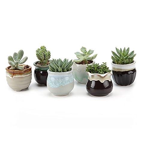 T4U Glaçure fluide Mini Pots Pastel&bronzer Série Ensemble Céramique Pot Plante Récipient Pépinière Pots Succulents Cactus Plante pots 6 Pièces