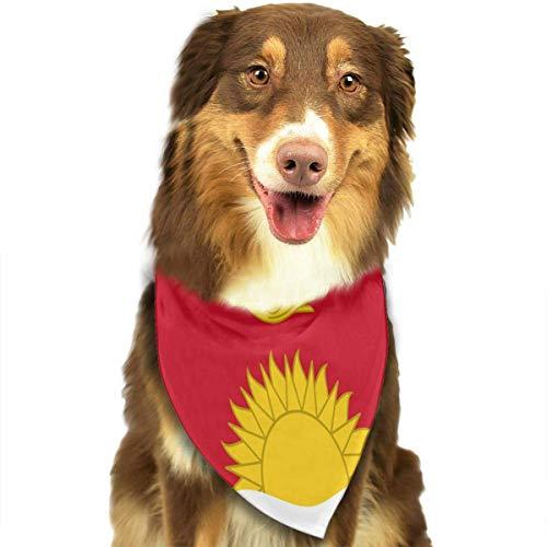dfegyfr Flag of Kiribati Dog Bandana Collars Triangle Neckerchief Bibs Scarfs Accessories Pet Cats and Baby Puppies Saliva Towel