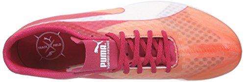 PumaevoSPEED Distance v6 Wn - Scarpe Running Donna Arancione (Orange (fluo peach-rose red-white 01))