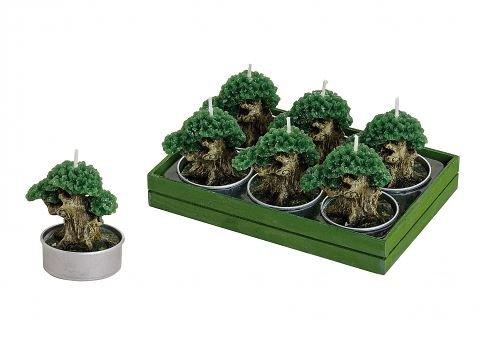bonsai-tealight-candle-set-set-6-pieces-5x4-cmoe