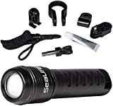 SeaLife Mini 600 HD Photo-Video Light by SeaLife