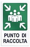 takestop® CARTELLO punto di raccolta SEGNALETICA DIREZIONALE SICUREZZA AVVERTIMENTO