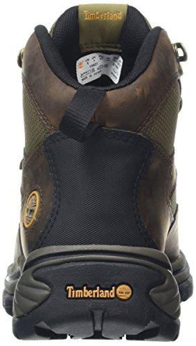 Timberland Chocorua Trail, Women's Boots 2