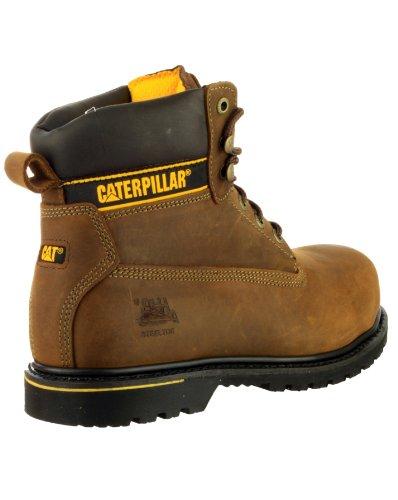 Sapatos Castanho Wsch Sb Hg Segurança Proteq Escuro Holton castanho Unisexo Cat adulto zxqwHA