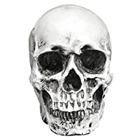 Amosfun Skull Ornaments Halloween Scary Decoration Bone Skull for Party Home Bar Table Decoration (Retro Black Skull Model)