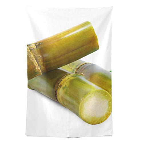 Schöne duftende Aloe Pflanze Wandteppich Wandbehang Cool Post Print für Wohnheim Home Wohnzimmer Schlafzimmer Tagesdecke Picknick Bettlaken 80 X 60 Zoll -