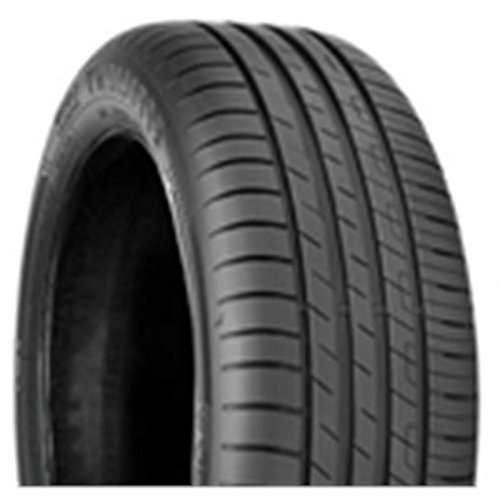 Pneumatici estivi good year efficient grip performance 205/55 r16 91v