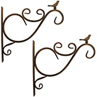 Lewondr Wall-Mounted Flower Stand, 2 Pieces Retro Bird Wrought Iron Hanging Flower Hooks Rack Wall Bracket for Plant Basket Lanterns with Screws, Garden Balcony Outdoor Décor