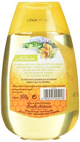 Lune de Miel Les Pratiques Miel d'Acacia Doseur 500 g