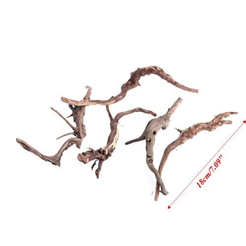 Qiman Holz Natur Kofferraumwanne aus Treibholz in Baumstammform Pflanze Aquarium Ornament Dekor, Holz dichten, (Fish Tank Dekor Driftwood)