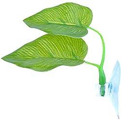 Raybre Art 1 X Hängematte Leaf Natürlicher Ruheplatz für Fisch Aquarium Dekorationen