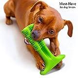 NTMY Kauspielzeug für Hunde Zahnbürstenstick Bissfeste Gummistange, Toll für Hunde Haustiere Mundpflege Zähne Putzen & Ausbildung (Must-Have für Hundebesitzer)