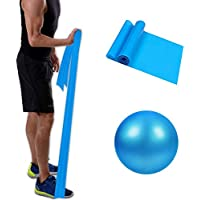 Resistance Band & Exercise Ball for Barre,Yoga,Pilates,Stability Exercise Training,Deep Tissue Massage, Core Training…