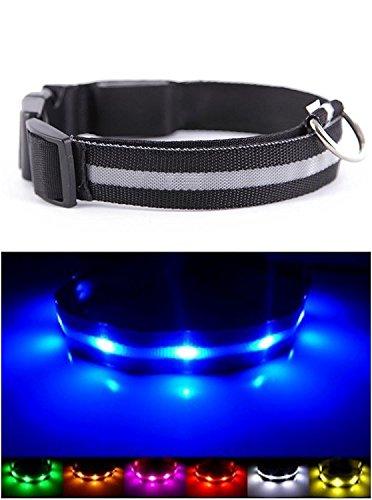 UK Verkäufer. Verbesserte Hund Sichtbarkeit & Sicherheit USB Wiederaufladbares LED Safety Dog Halsband. Ultrahelle LED \'s. An Geräte. Hund wird mehr sichtbar & Sicher (EXTRA GROSS - XL, SCHWARZ)