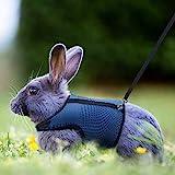 Petcomer Confortevole Imbracatura per Coniglio con Elastico Guinzaglio Morbido Pettorina Traspirante per Piccoli Animali Criceti Gatti(L Blu)