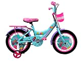 HelloBikes High End 16 inch Kids Girl Pink Bicycle for 4-8 Years