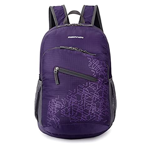 ORICSSON 20L Water Resistant Handy Packable Lightweight Backpack Foldable Rucksack School Daypack(Purple)