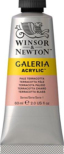 Winsor & Newton 2120437 Galeria Acrylfarbe, hohe Pigmentierung, lichtecht, buttrige Konsistenz, 60 ml Tube - Terrakotta Blass