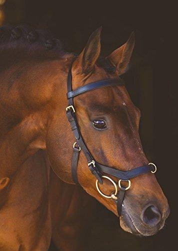 Horseware Rambo New Micklem Multi Proffesional black (Standard Horse)