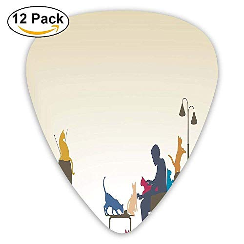 Colorful Art Of An Human Being In Normal City Life Crazy Cat Lady Guitar Picks 12/Pack