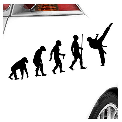 Karate Kampfsport Evolution Aufkleber Sticker 25 Farben Neon Matt -