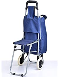 Inditradition Shopping Trolley Bag with Attached Folding Chair | Luggage Bag with Wheels, 54x24 cm (36 Liter) Bag Size (Random Color)