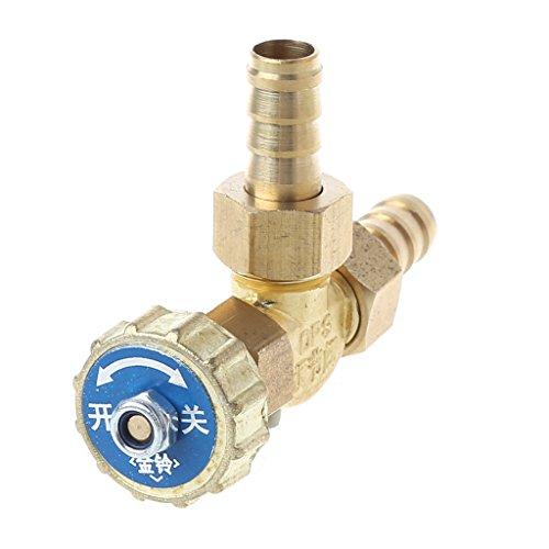 sing-Nadelventil, 8mm/10mm, Lager: 1 Mpa, Propan-Butan-Gaseinsteller Stutzen mit Widerhaken, 1 Stück. (10mm) ()