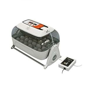 RCOM King Suro Max Modell 2018 Inkubator, automatisch