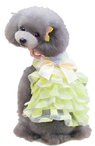 Hunde Kostüm Extra Large - Fancy Me Haustier Mädchen Hund Katze Rüschen Girly Prinzessin Kleid Kostüm Outfit klein Hundebekleidung Kleidung XS-XL - Gelb, Extra Large